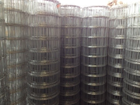 Ngw Fencing Supplies Welded Mesh